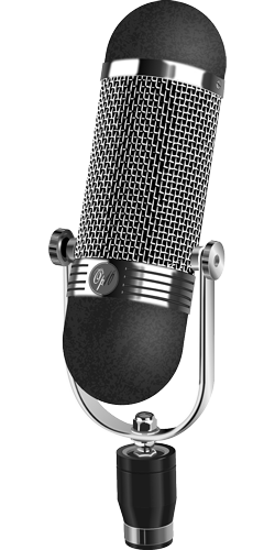 Recording Microphone for Musician Website Design